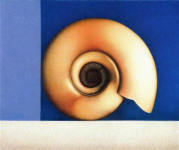 Wim Blom-Fossil 2004 Egg tempera on gesso panel 25 x 30 cm-